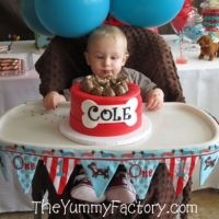 Birthday Boy High Chair Banner
